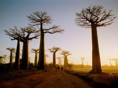 Madagascar : (Re)-construire l'image du pays ?